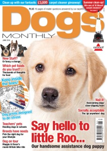 Dogs Monthly 2016