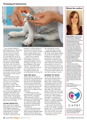 Dogs Monthly 2016 Page 3
