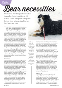 Dogs Monthly June 2018 Page 1