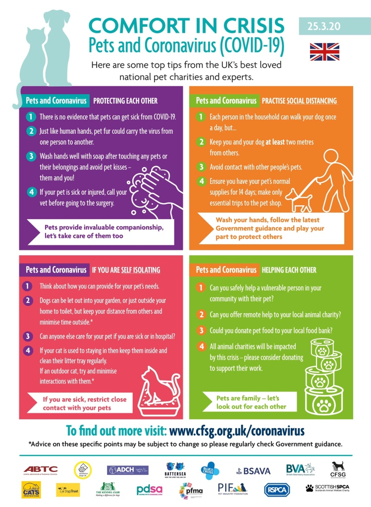 Pets and corona virus advice from royal veterinary college